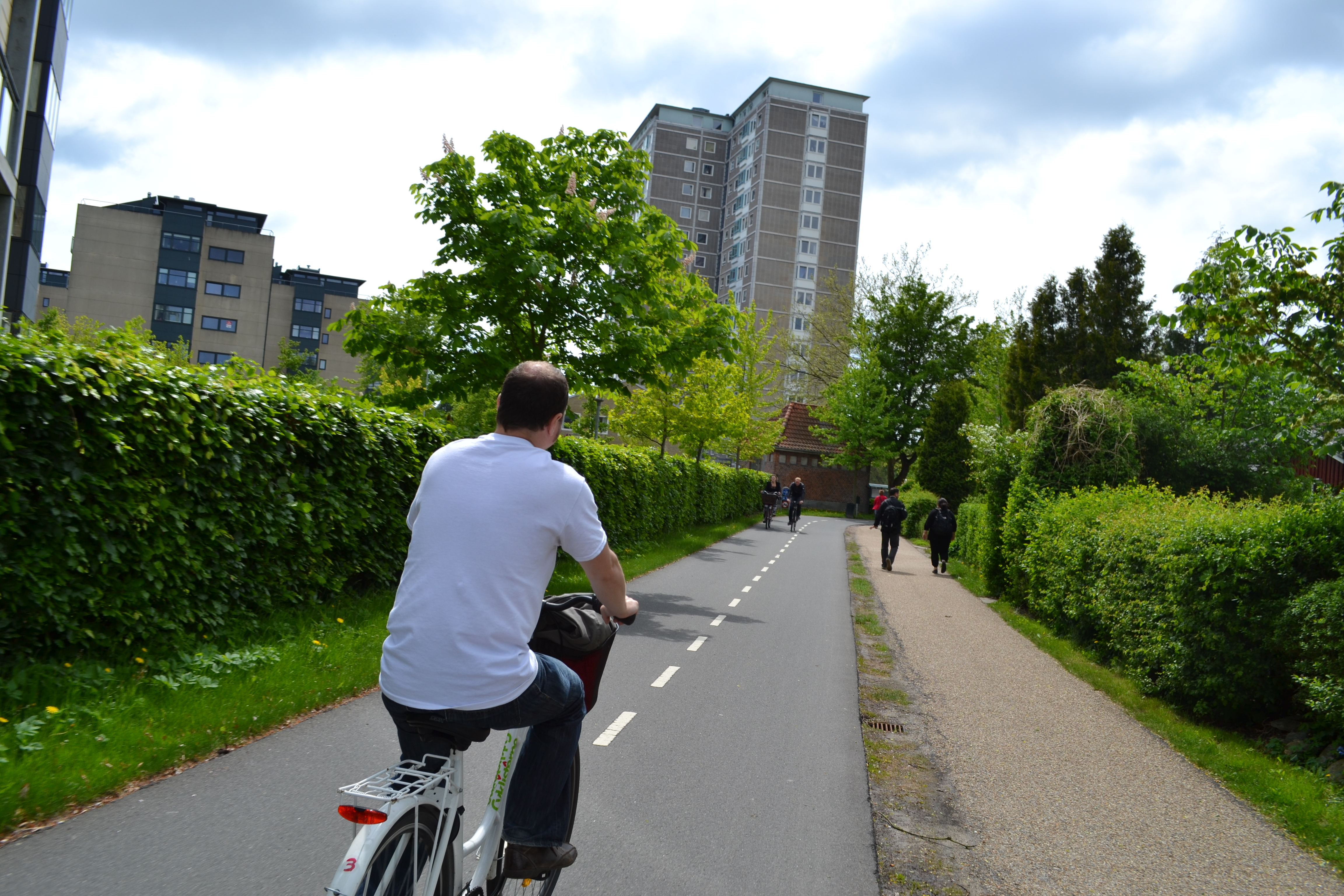 Bicycle paths through green corridors / greenways